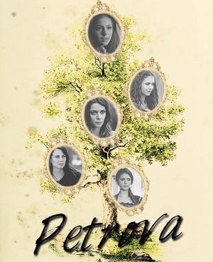 Petrova Family বৃক্ষ
