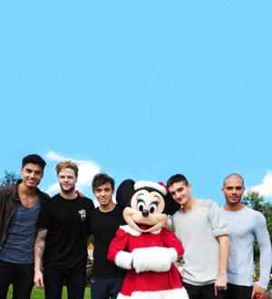 The Wanted Disneyworld
