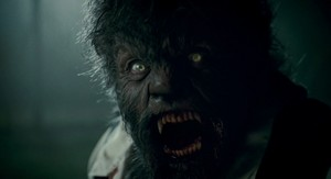 The Wolfman Трофеи