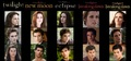 Twilight to Breaking Dawn part 2 - twilight-series photo