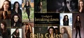 Bella Cullen BD  - twilight-series photo