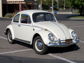 Volkswagen Beetle - volkswagen photo