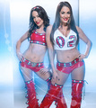 Bella Twins - wwe-divas photo