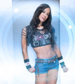 WWE Diva AJ Lee - wwe-divas photo