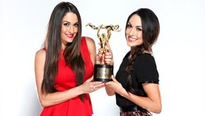Diva of the jaar 2013 - The Bella Twins