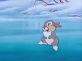 Walt Disney Screencaps - Thumper - walt-disney-characters photo