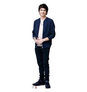Random Zayn (photoshoot 2013)