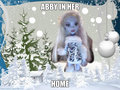 abby at home - monster-high fan art
