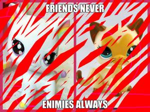 never o always