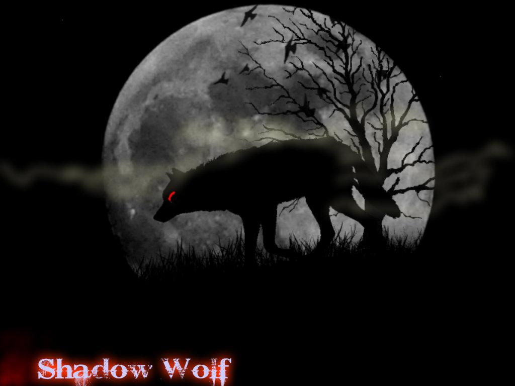 shadow lobo