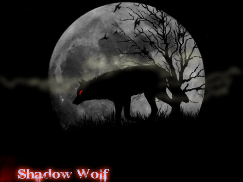 Wolves Wallpaper Entitled Shadow Wolf