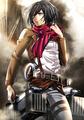 Mikasa           - anime fan art