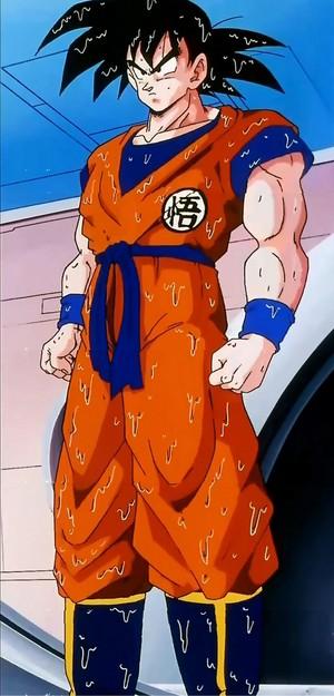 Гоку Dragon Ball Z