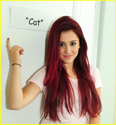 Ariana Grande karatasi la kupamba ukuta containing a portrait entitled Cat Valntime
