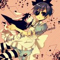 ciel in wonderland ~