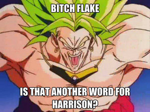 Broly and his fancharacters