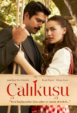 Poster Calikusu