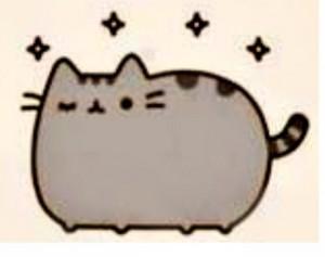 kitty wink