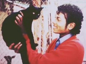 Michael Jackson Holding A Cat