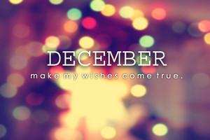 merry Weihnachten