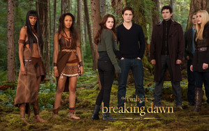 Breaking Dawn 壁纸