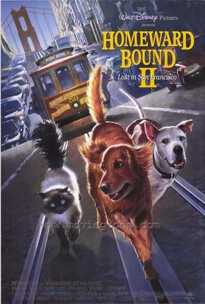 """Movie Poster For 1996 Disney Film, """"Homeward Bound II: Lost In San Franscisco"""""""