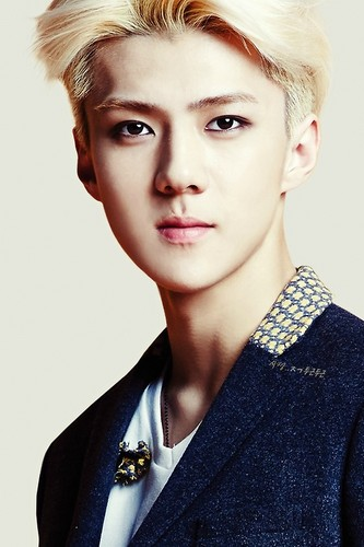 EXO-K fondo de pantalla probably containing a well dressed person, a business suit, and a portrait titled Sehun