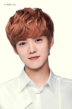 Luhan (IVY Club)