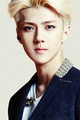 Sehun      - exo photo