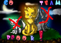 GO TEAM BROOK  - warrior-cats fan art