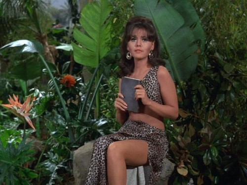Gilligan's Island images mary ann summers wallpaper and ...