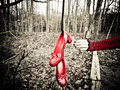 Ruby Slippers - gothic photo