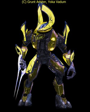 Honor Guard: Yoka Vadum