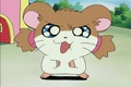 More screenshots - hamtaro photo