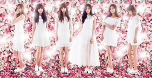 ♥ K-pop Forever ♥