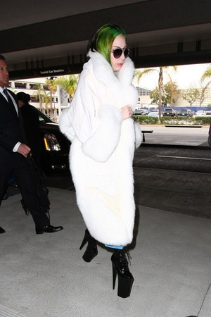 ♥ Lady GaGa ♥