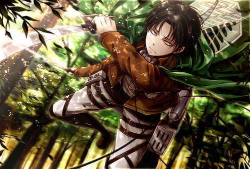 Levi rivaille shingeki no kyojin gambar rivaille wallpaper hd levi rivaille shingeki no kyojin wallpaper containing a pisang entitled rivaille wallpaper voltagebd Image collections