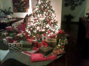 Santa brought my family a few presents last night <3
