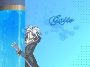 ♪~*Gaito*~♪