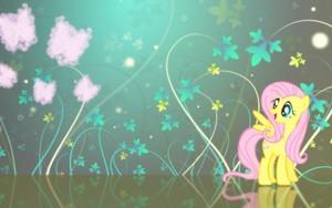 Fluttershy fond d'écran