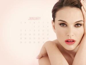 NP.COM Calendar - January