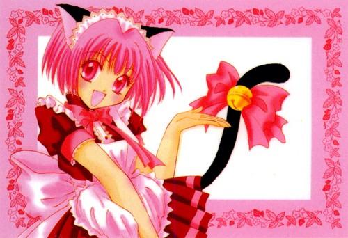 Neko anime Characters karatasi la kupamba ukuta possibly with a bouquet called Ichigo momomiya