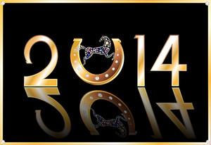 nouvel an 2014 bis