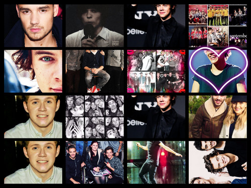 One Direction images One Direction Collage HD wallpaper ...One Direction 2013 Collage Wallpaper