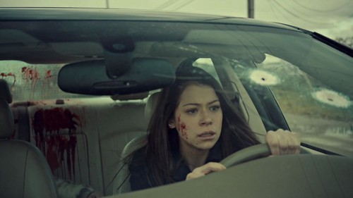 Orphan Black fond d'écran possibly containing an automobile entitled Orphan Black Season 1 trophée