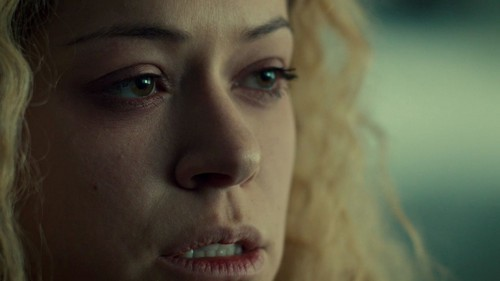 Orphan Black fond d'écran with a portrait called Orphan Black Season 1 trophée