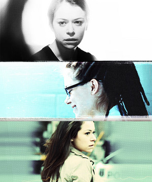 orphan black -f an art