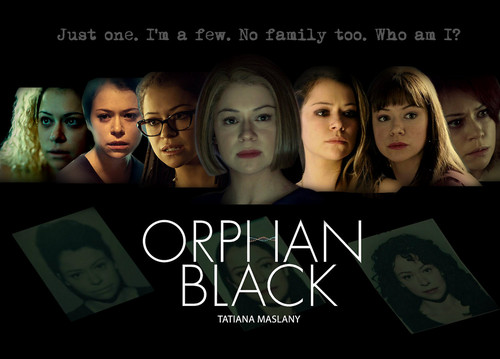 Orphan Black پیپر وال possibly with a sign and a portrait entitled orphan black - colons