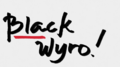 black wyro - photography photo