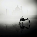 تصاویر of the Taj Mahal سے طرف کی Josef Hoflehner